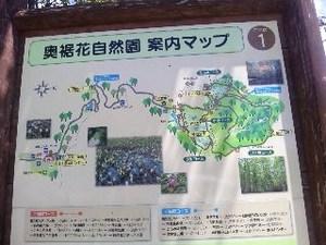 鬼無里・自然.jpg