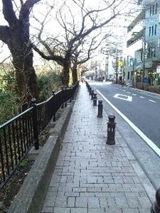 ジブリ・散歩道.jpg