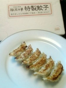 四川乃華餃子.jpg